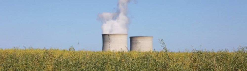 Nuclear  power  in  France:  picturing  the  industry's  future